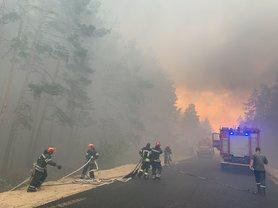 Володимир Зеленський ухвалив рішення про використання авіації для гасіння лісових пожеж у Луганській області.