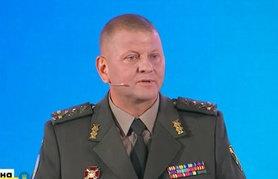 ЗСУ мають готуватися до наступу для звільнення окупованих територій, – Залужний.
